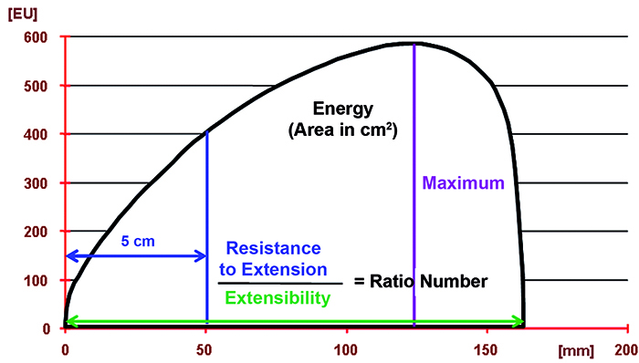 Extensograph - graph